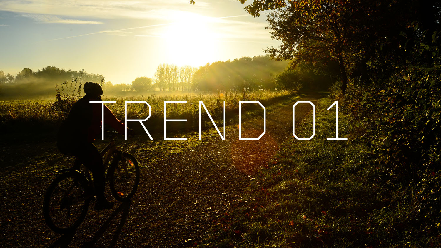 Trendreport 5 digitale Marketing Trends 2020 - 2022, Trend 1